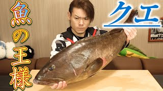 【Market Price ???】Amazing Dish With Very Expensive Longtooth Grouper