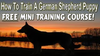 +++ How To Potty Train A German Shepherd Puppy ▶german Shepherd Free Training Course◀ Housebreaking