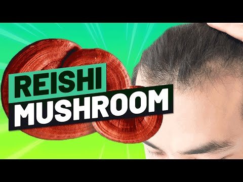 Reishi Mushroom for Hair Growth: Benefits, Recipes and