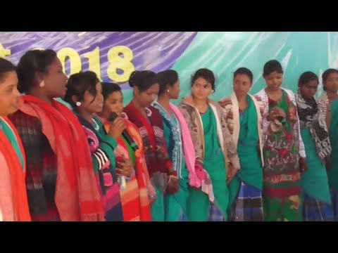 Sohray program video, godda college godda , New Sohray santali video