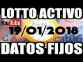 LOTTO ACTIVO DATOS FIJOS PARA GANAR  19/01/2018 cat06
