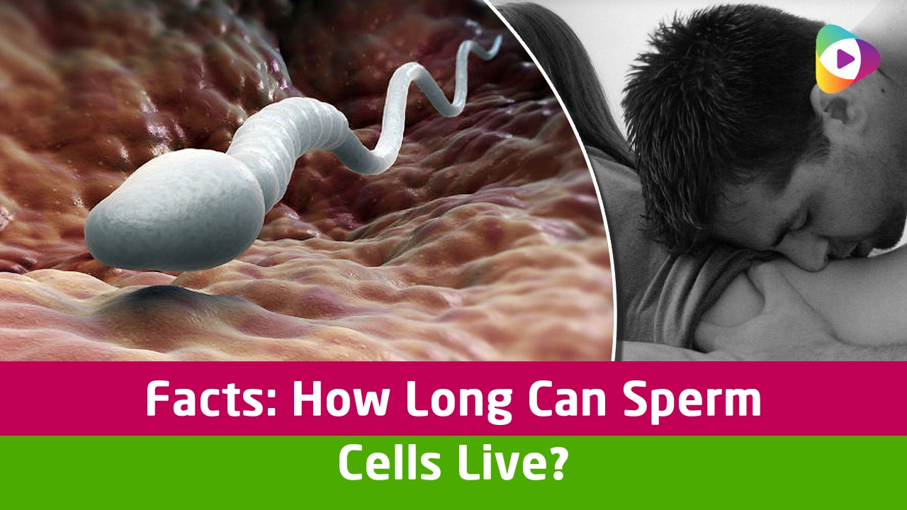 sperm to live long How