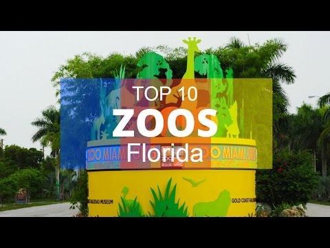 Top 10. Best Zoos in Florida