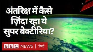 Super Bacteria : Universe में तीन साल तक कैसे ज़िंदा रह गए बैक्टीरिया? (BBC Hindi)