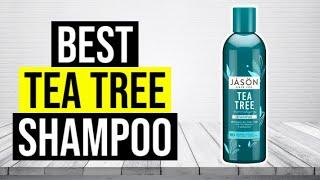 BEST TEA TREE SHAMPOO 2020 - Top 5