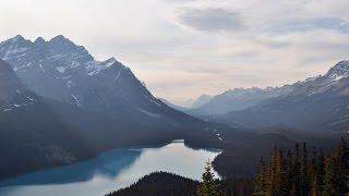 أخبار منوعة - الفاو تحيي اليوم العالمي للجبال