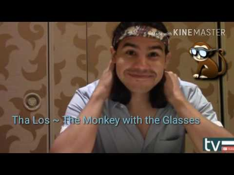 Tha Los ~ The Monkey with the Glasses