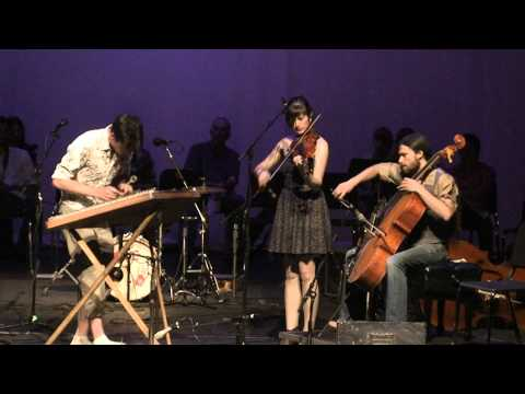 The Bee Eaters - Performing songs about other birds during the Shasta Fiddle Camp concert