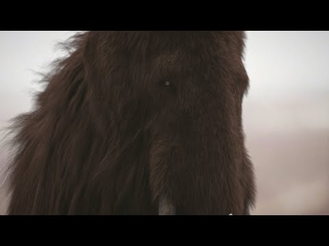 Mammoth – The Giant Mammal From The Past / Documentary (English/HD)
