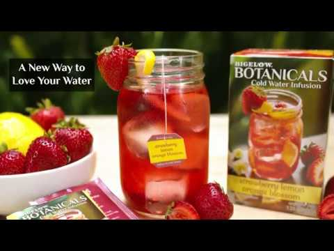 New! Bigelow Botanicals - Cold Water Infusions