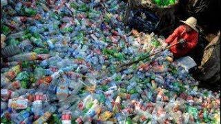 En completo abandono el reciclaje en CDMX: Arnold Ricalde