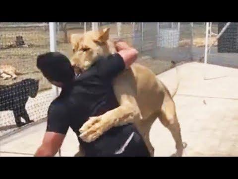 Лев увидел своего приемного отца спустя 4 года разлуки