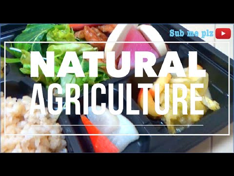 What's the Difference between Organic & Natural/Wild Agriculture?