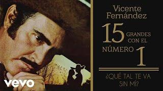 Vicente Fernández - Qué Tal Te Va Sin Mí (Tema Remasterizado) [Cover Audio]