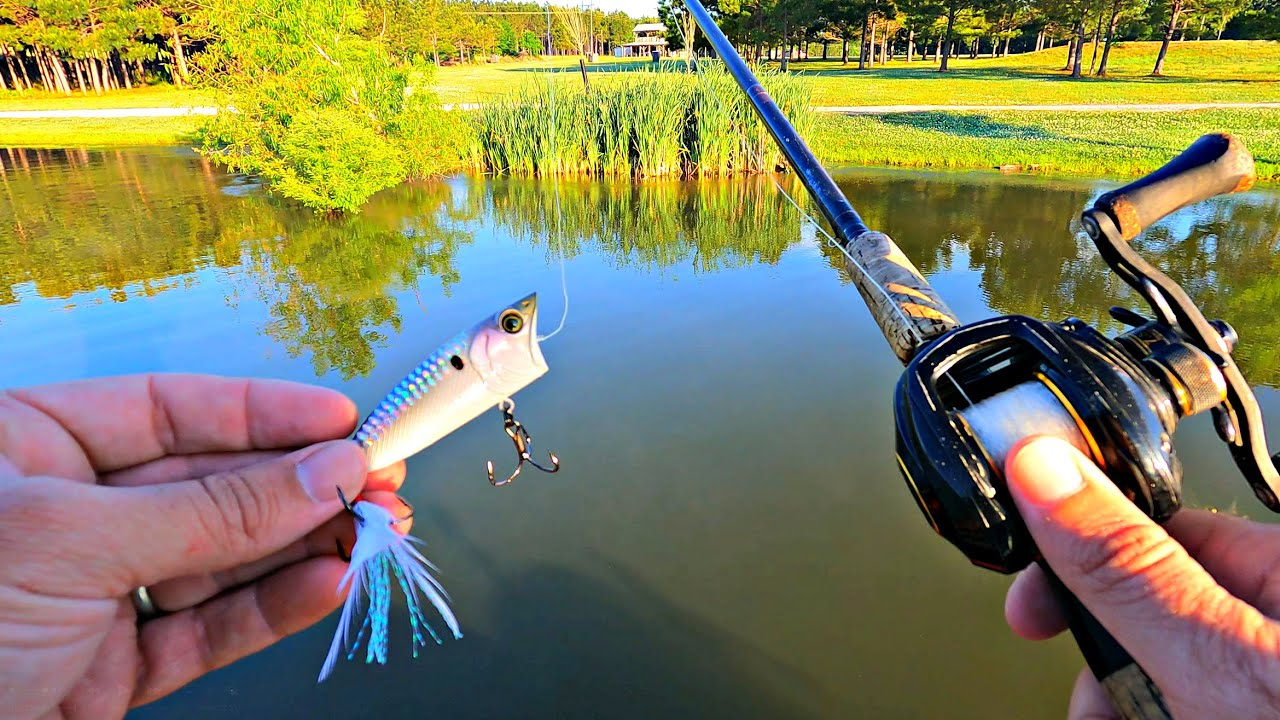 New Popper Produces BIG Topwater Blowups!