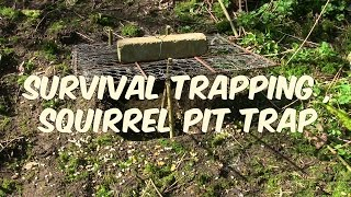 Survival Trapping: Squirrel Pit Trap