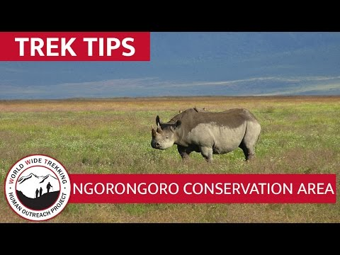 Ngorongoro Conservation Area African Safari | Trek Tips