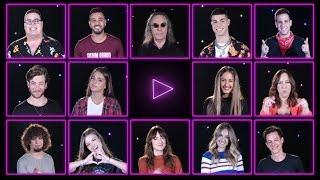 כוכבי פסטיגל 2019 נחשפים - #PLAYפסטיגל