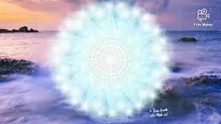 Maharic quick Seal - MCEO Freedom teachings ✨