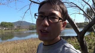 愛知県豊橋市岩田運動公園を撮影してきました