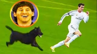 Funny soccer football vines 2017 ● goals l skills l fails #28