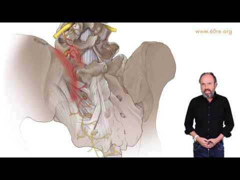 ISG-Syndrom - Neue Methoden - Peter Sigg