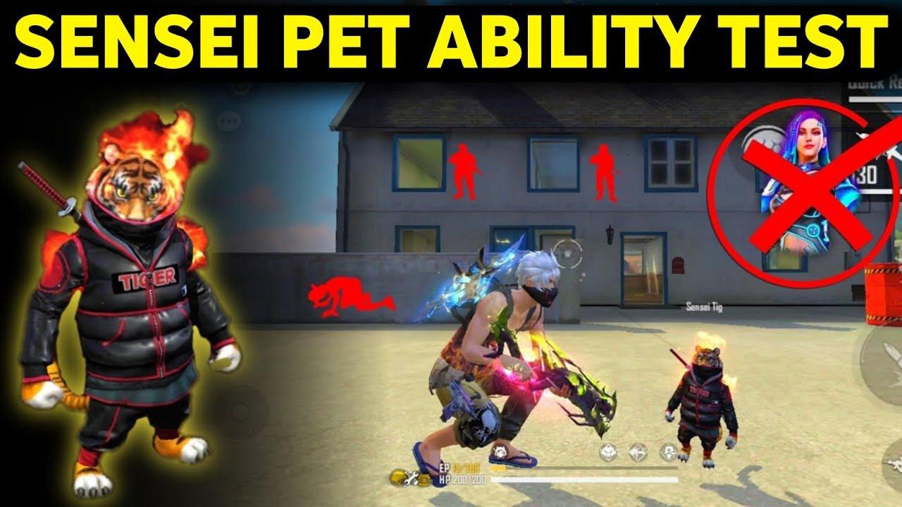New pet ability in free fire || sensei tiger pet ability test in free fire || tiger pet ability test