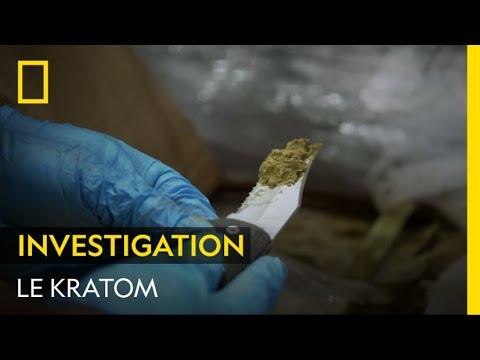 Le kratom, cette substance onéreuse et dangereuse