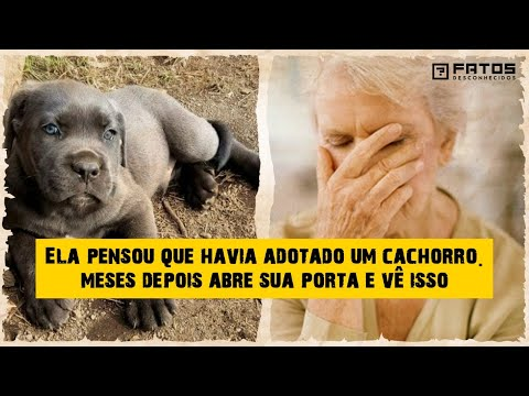 Idosa acreditava ter adotado um cachorro, e ela foi salva por uma terrível criatura