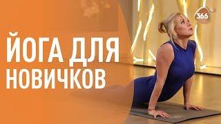 Комплекс для Начинающих | ЙОГА | Светлана Масленникова