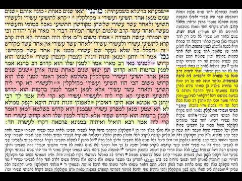 הדף היומי מסכת בכורות דף ס Daf yomi Bechoros daf 60