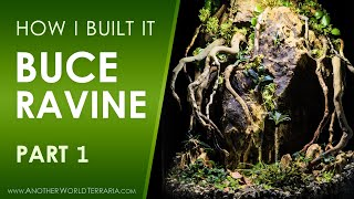 How I made the Buce Ravine Terrarium - Part 1 (Lots of photos and info!)
