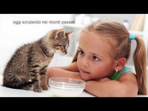 Piccole storie di animali – Marialuisa Anderlini