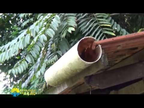 Como Captar Agua Da Chuva