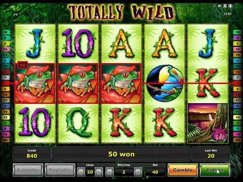 Игровые автоматы tottaly wild интернет-казино игровых автоматов