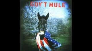 Gov't Mule - Gov't Mule (album)