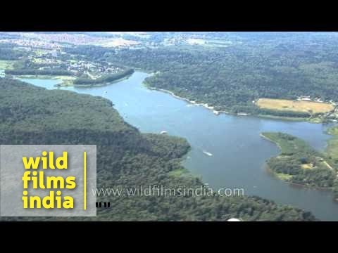 Volga River and taiga forest - aerial footage