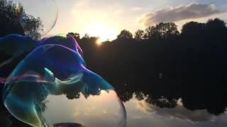 Bulléon |    Les bulles de printemps |🇺🇸The spring bubbles.