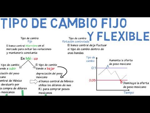 Tipo de cambio fijo y flexible | Cap. 16 - Macroeconomía