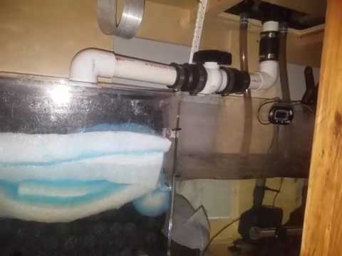 Freshwater Sump