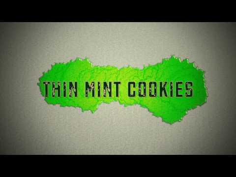 Thin Mint Cookies Strain