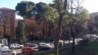 Crazy Farm - Questo suono (StreetVideo)
