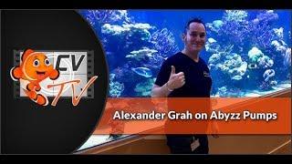 Abyzz Pumps: Alex on Abyzz