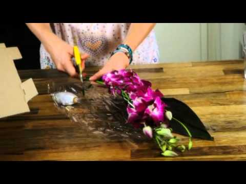 Caring For Your Dendrobium Orchids Orchid Care Youtube