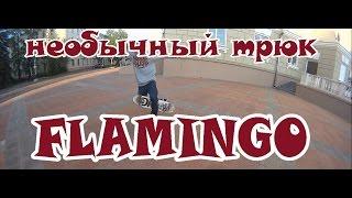 Выпуск 12:как сделать фламинго на скейтборде