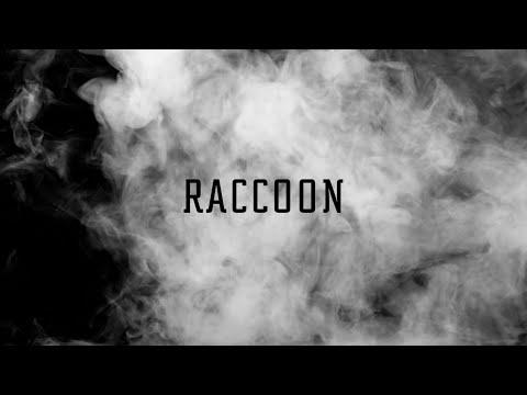 RACCOON - วิญญาณช่างไม้「Lyric Video」