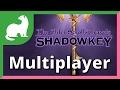 The Elder Scrolls Travels: Shadowkey Multiplayer Feature
