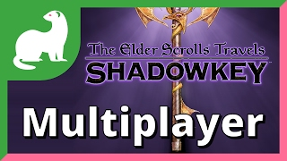 The Elder Scrolls Travels: Shadowkey Multiplayer Feature