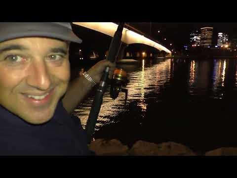 Swan River Fishing Under The Narrows..BIG FISH But..