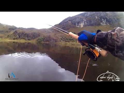 FLY FISHING IN SOUTH AMERICA